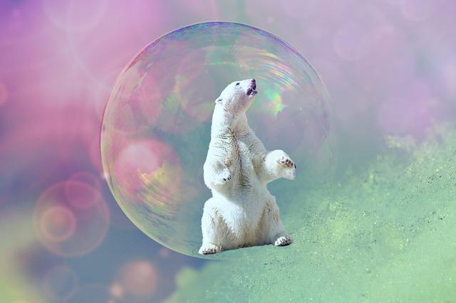 jääkarhu-saippuakuplassa-kuplautuneena