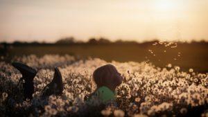 lapsi puhaltaa kukkaan, josta lähtee ilmaan siemeniä, kuva: H